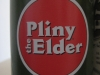 pliney the elder